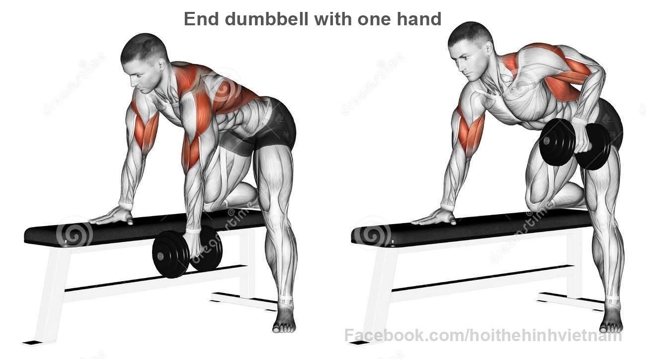 esercizi palestra schiena