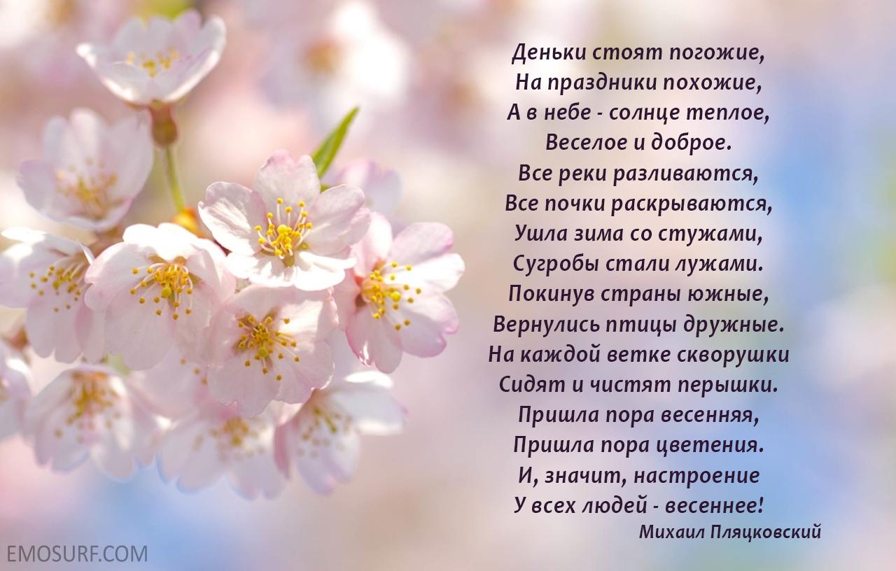 красивые стихи для салона красоты