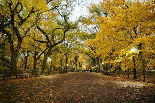 Осень бесспорно красивое время года