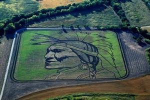 Агроживопись, или рисование трактором на полях