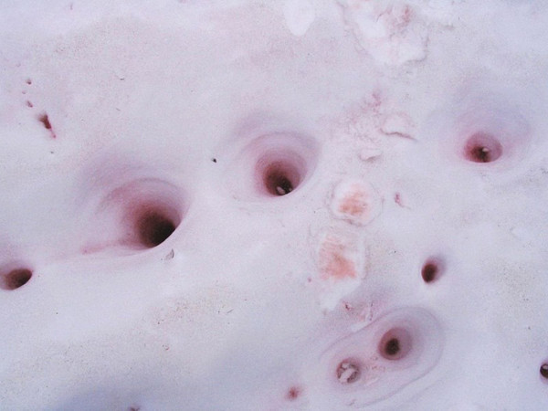 http://c0.emosurf.com/0003Kp0v5LKS09G/watermelon-snow-13.jpg