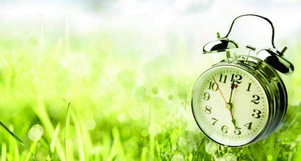 Время: пустое и наполненное. Spring